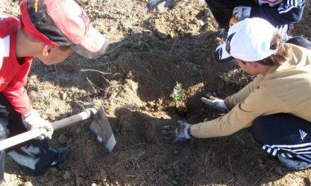 Adesval desarrolla varias jornadas de voluntariado ambiental con 200 escolares del Valle del Alagón