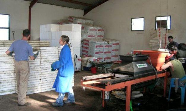 La comarca de Sierra de Gata oferta todos los fines de semana un programa de ocio para discapacitados