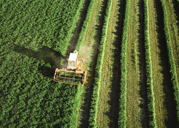 Medio Ambiente y Medio Rural y Marino celebra con las CC.AA una reunión para abordar la PAC en 2020