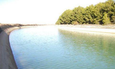 Medio Ambiente adjudica el control y vigilancia de la modernización de acequias en la zona regable del Alagón
