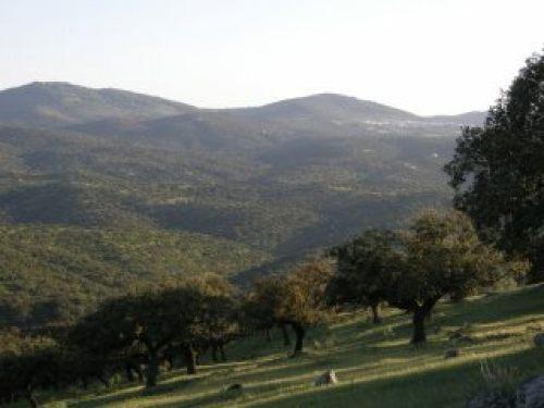 La calidad del aire en Extremadura es superior a la registrada en otras comunidades autónomas