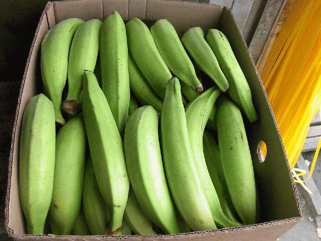 La cocaína descubierta en cajas de plátanos en supermercados de Cáceres y Plasencia suma 16,7 kilos