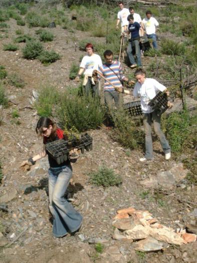 """Las Hurdes recibe este fin de semana a 100 voluntarios del programa de reforestación """"Plantabosques"""""""