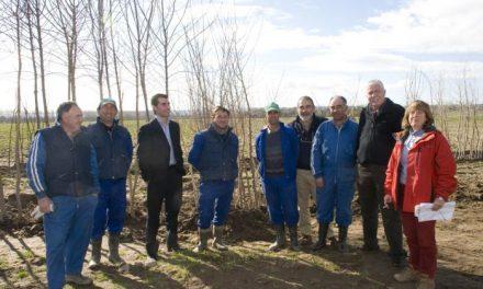 La Diputación entrega 4.000 árboles y 6.000 arbustos del vivero de la finca provincial a 73 municipios cacereños