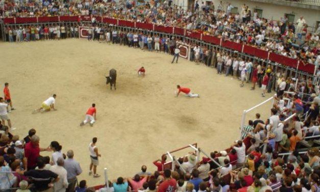 Una novillada el 11 abrirá los festejos taurinos de Moraleja