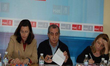 'Plasencia, a pie de calle' se convierte en el primer boletón oficial del PSOE local en este municipio