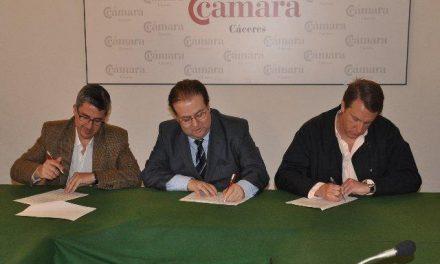 FEP, FEC y UPTA presentan una candidatura conjunta al Pleno de la Cámara de Comercio de Cáceres