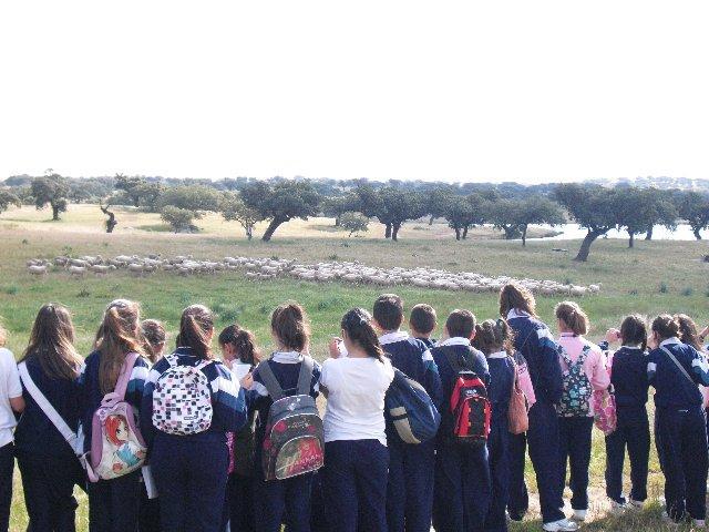 Alumnos de primaria visitan una explotación para conocer las fases de producción de los corderos de Corderex