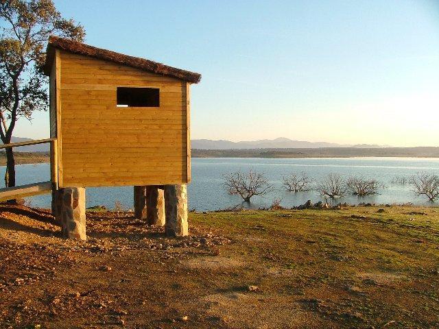 La comarca de Miajadas-Trujillo acoge el fin de semana dos rutas ornitológicas por la comarca