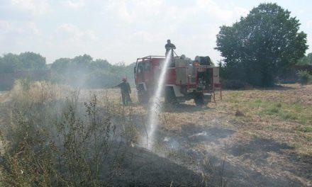 Un centenar de operarios han trabajado este invierno en el plan de prevención de incendios de Gata