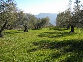 Agricultura abre el plazo de inscripción de un curso sobre productos agroalimentarios con denominación de origen