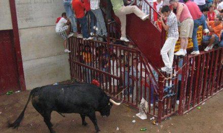 El toro de la Junta de Defensa de nombre Casero hizo sudar la camiseta a los corredores de Coria