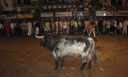 Camillero se convierte en el primer toro en morir pasadas las 23.00 horas debido al retraso en el inicio de la lidia