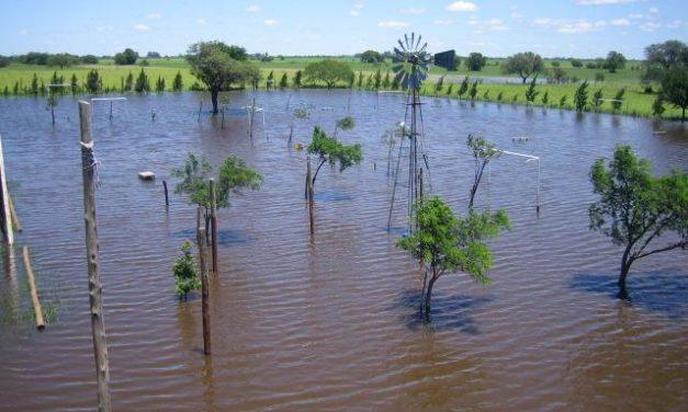 El MARM publica la convocatoria de ayudas destinadas a paliar los daños por catástrofes naturales