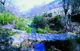 El Ayuntamiento de Coria ha organizado la ruta de Alfonso Onceno para el próximo 11 de noviembre
