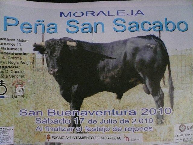 La peña San Sacabó de Moraleja elige un novillo procedencia Santa Coloma para donarlo a la afición