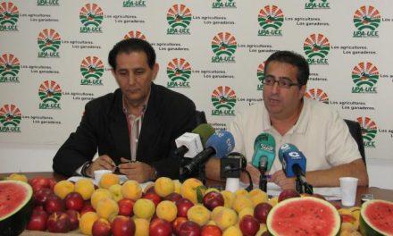 UPA-UCE exige precios justos para productores y consumidores y fin a la especulación