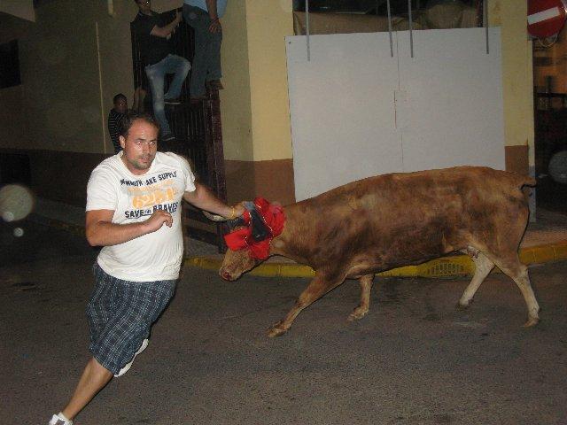 Los últimos festejos taurinos nocturnos en Moraleja concluyen sin incidentes ni heridos por asta de toro