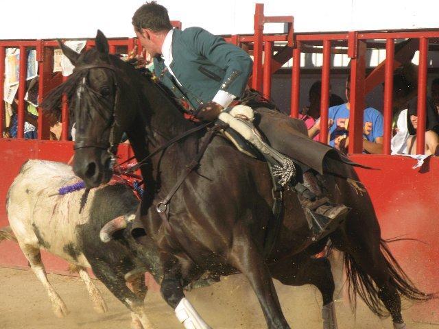 Mariano Rojo triunfa y corta tres orejas en la corrida de rejones que cierra la feria taurina de Moraleja