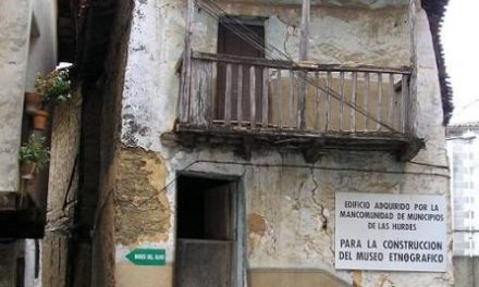 JJSS de Casar de Palomero celebra la fiesta 'Imagina el Verano 2011' con la asistecia de responsables del PSOE