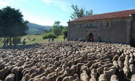 Extremadura durante los días 27, 28 y 29 de octubre próximos el II Congreso Nacional de Vías Pecuarias
