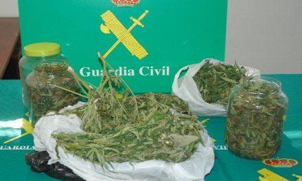 La Guardia Civil detiene a nueve personas en la provincia de Cáceres por delitos contra la salud pública
