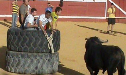 El joven de Valrío herido por un toro en Montehermoso ha despertado del coma aunque su estado sigue siendo grave