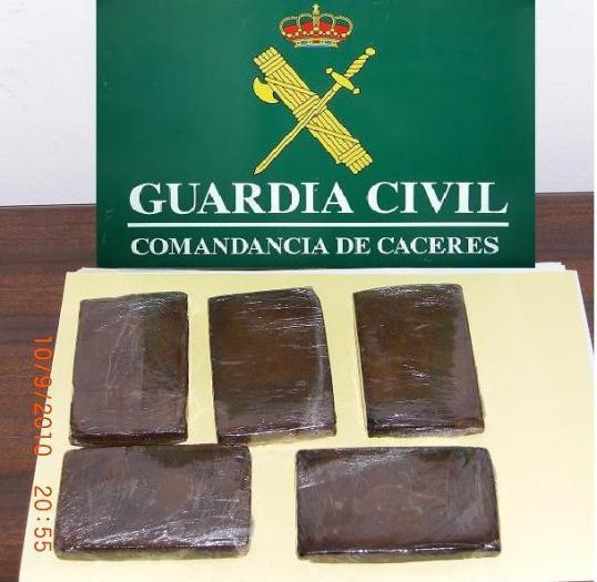 La Guardia Civil descubre una plantación de marihuana en Moraleja a raíz de una denuncia por robo