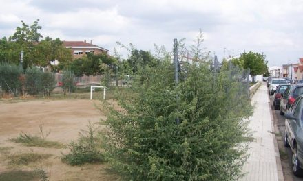 El PP de Moraleja denuncia el «abandono» en el que se encuentran los parques y jardines de la localidad