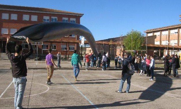 """La actividad de ciencia """"Experimenta 2"""" reúne a 60 alumnos en el patio del IES Jálama de Moraleja"""