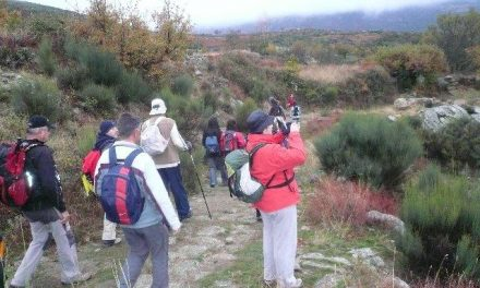 Un millar de personas participa en la XII de la ruta senderista «Bosques del Ambroz»