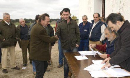 El sorteo anual de ganado vacuno de la Diputación de Cáceres se ha adjudicado por un importe de 75.200 euros.