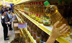 La DOP Gata-Hurdes vuelve a demandar controles de calidad para evitar el fraude en el aceite de oliva virgen
