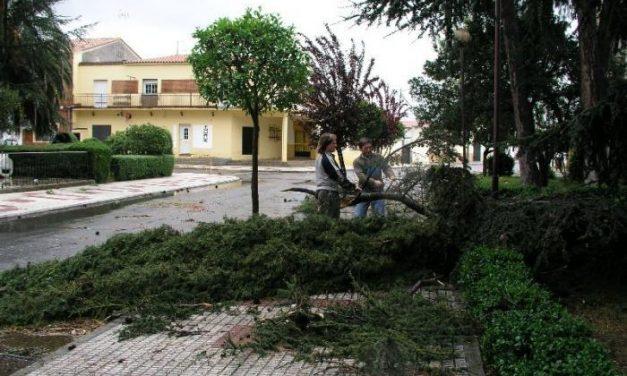 Un tornado afecta durante diez minutos a naves y viviendas de Aceuchal, sin daños personales