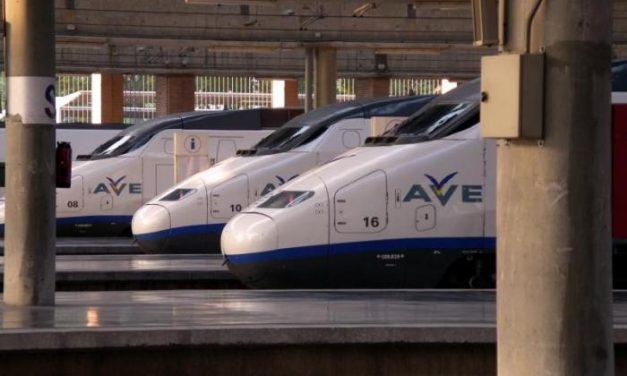 La Asociación Cívica aboga por que la estación internacional del AVE sea un símbolo de integración