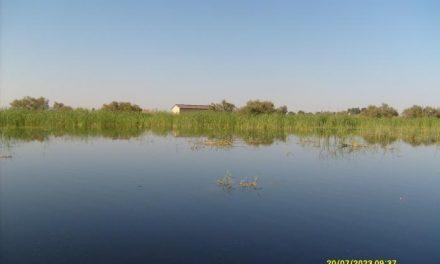Medio Ambiente adquiere 18 fincas de los parques nacionales de Monfragüe y Tablas de Daimiel