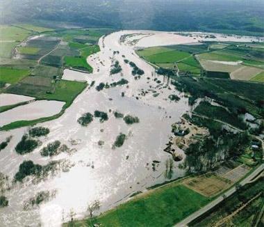 La crecida del río Alagón se lleva las ovejas de un ganadero en el municipio de Montehermoso