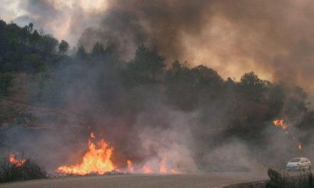 La Junta adjudica por más de 414.900 euros actuaciones en Las Hurdes para prevenir los incendios forestales