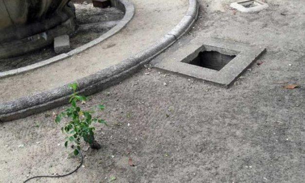 Ecolo-Verdes de Extremadura denuncia el mal estado de un parque en Villanueva de La Serena