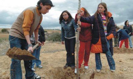 """Más de 900 voluntarios participarán este año en la octava edición del programa """"Plantabosques"""""""