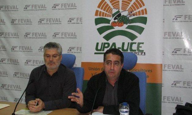UPA-Uce exige que se mantengan los contratos entre productores e industria en el sector del tomate
