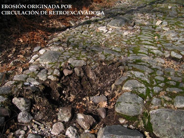 La Sociedad Zoológica acusa a San Martín de Trevejo de destrozar la calzada romana y el consistorio lo desmiente