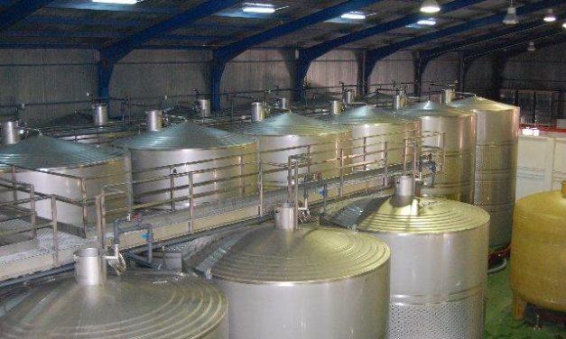 Profesionales de la hostelería y del sector agroalimentario aprenden a catar vinos en la Sierra de Gata