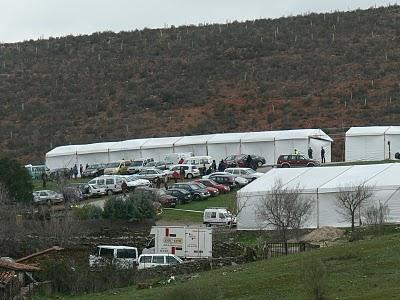 Ecologistas Extremadura critica el impacto de la Feria de Ornitología (FIO) en Monfragüe y pide cambios