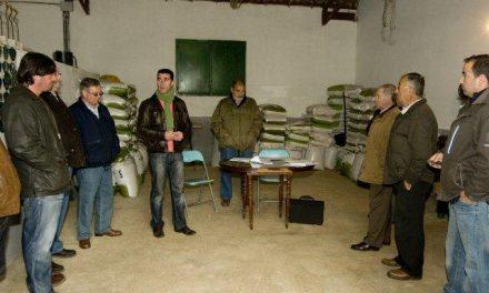 La Diputación adjudica en subasta pública 200 ejemplares de ganado ovino por 20.000 euros