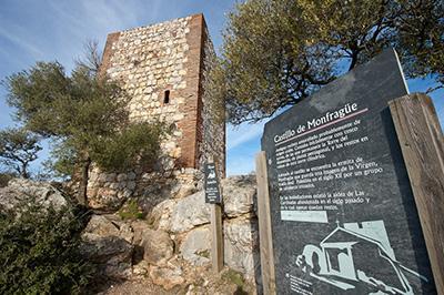 El Patronato de Monfragüe aprueba las obras del castillo y la inminente construcción de la estación biológica