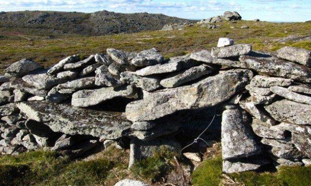 La Sociedad Zoológica de Extremadura denuncia la práctica ilegal de caza con lazo en un paraje de Eljas