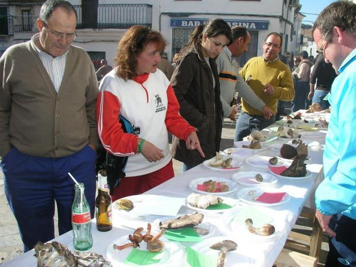 Un total de 300 personas participan en el VIII Encuentro Micológico celebrado en Portezuelo