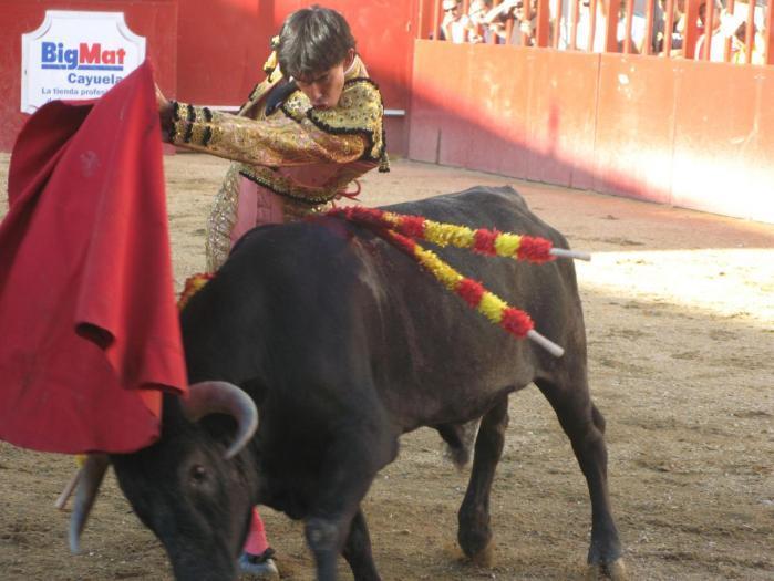La Mesa de Contratación de Moraleja adjudica hoy la organización de los festejos taurinos de San Buenventura