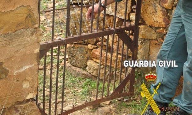 """El Seprona detiene a tres cazadores furtivos sorprendidos """"in fraganti"""" en un coto de Zarza Capilla"""
